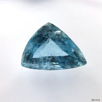 Aquamarin Trillion 12,30 kt. 17,9x13,1 mm (AQ-1073)